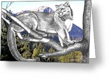 Cougar Mountain Greeting Card by Russ  Smith