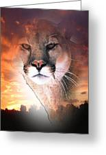 Cougar View Greeting Card