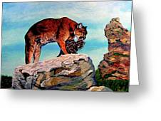 Cougars Mother And Cub Greeting Card