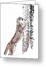 Cougars Tree Greeting Card