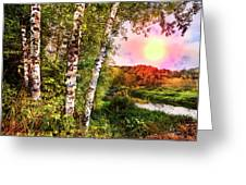Country Birch Greeting Card