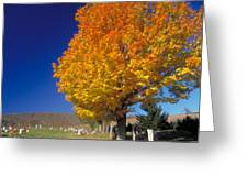 Country Cemetary Greeting Card