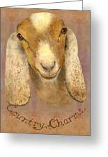 Country Charms Nubian Goat With Bright Eyes Greeting Card