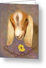 Country Charms Nubian Goat With Daisy Greeting Card