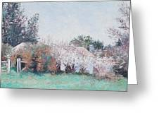 Country Cottage In Spring Time Greeting Card