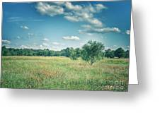 Country Fields Greeting Card