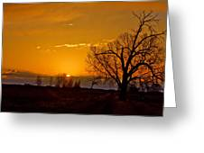 Country Golden Sunrise Greeting Card