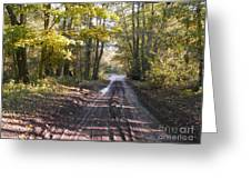Country Lane In Autumn 2 Greeting Card