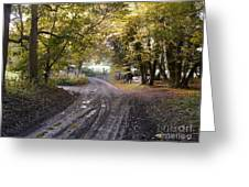 Country Lane In Autumn 4 Greeting Card