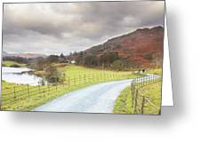 Country Lane In The Lakes Greeting Card
