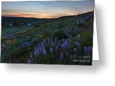 Country Meadow Sunset Greeting Card
