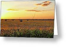 Country Pasture At Sunset Greeting Card