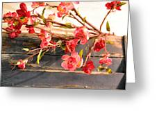 Country Quince Greeting Card