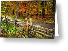 Country Road In Autumn Forest Greeting Card