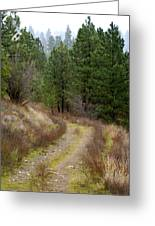 Country Road Take Me Home Greeting Card