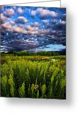 Country Strolling Greeting Card