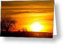 Country Sunrise 1-27-11 Greeting Card