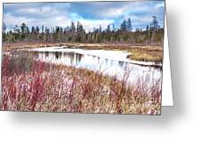 Country Winter 12 Greeting Card