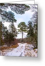 Country Winter 14 Greeting Card