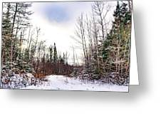 Country Winter 5 Greeting Card