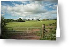 Countryside In Wales Greeting Card