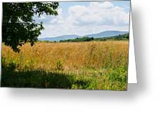 Countryside Of Italy 2 Greeting Card
