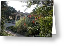Court Yard At Mission Carmel Greeting Card