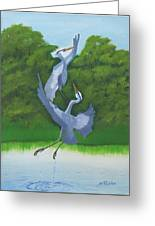 Courtship Dance Greeting Card