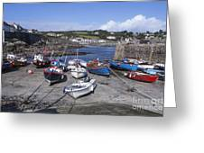 Coverack Harbour Cornwall Greeting Card