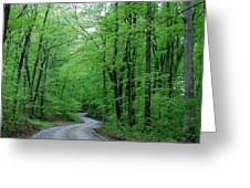 Covered Bridge Road Greeting Card by Beverly Cazzell