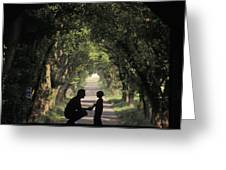 Covered Bridge Silhouettes In Mount Greeting Card