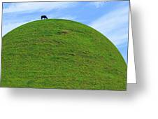 Cow Eating On Round Top Hill Greeting Card