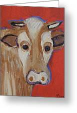 Cow Face Greeting Card