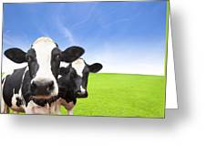 Cow On Green Grass Field Greeting Card