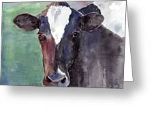 Cow Portrait Greeting Card