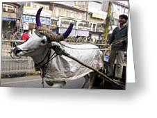 Cow Pulling Cart Greeting Card