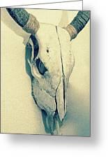 Cow Skull, Vintage Greeting Card