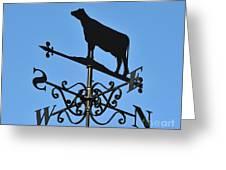 Cow Weathervane. Greeting Card