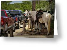 Cowboy Cars Greeting Card