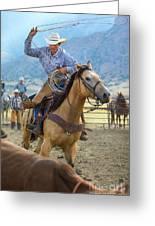 Cowboy Roping A Steer Greeting Card