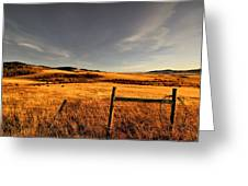 Cowboy Trail Greeting Card