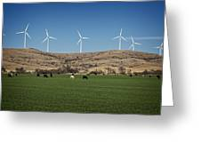 Cows And Windmills Greeting Card