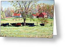 Cows Grazing In One Field  Greeting Card