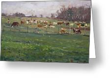 Cows In A Farm, Georgetown  Greeting Card