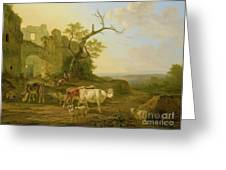 cows in a Meadow Greeting Card