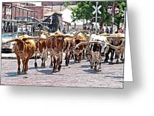 Cowtown Stockyards Greeting Card