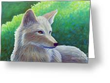 Coyote Charisma Greeting Card