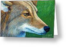 Coyote Logic Greeting Card