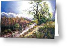 Coyotes In Placerita Canyon Greeting Card