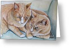 Cozy Cats Greeting Card